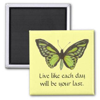 Mariposa verde/imán vivo imán cuadrado