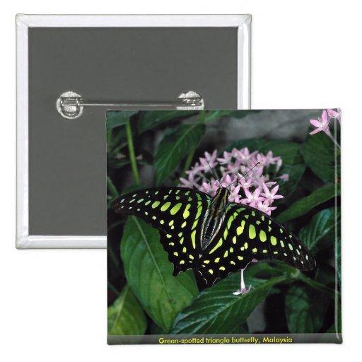 mariposa Verde-manchada del triángulo, Malasia Pin Cuadrada 5 Cm