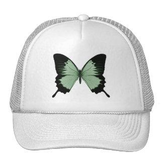 Mariposa verde y negra grande gorro