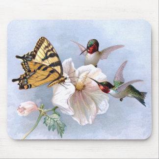Mariposa y colibríes tapetes de ratón