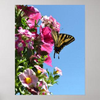 Mariposa y flores II Posters