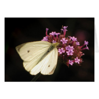 Mariposa y flores Pascua Tarjeta