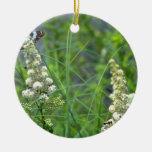 mariposa y meadowsweet blancos, Quebec, Canadá. f Ornamentos De Navidad