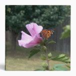 Mariposa y rosa de la carpeta de Sharon
