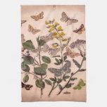 Mariposas botánicas de los Wildflowers de las Toalla De Cocina