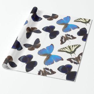 Mariposas clasificadas papel de regalo