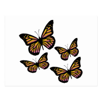 Mariposas coloridas de la mariposa postal