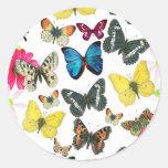 Mariposas coloridas del amarillo del rojo azul del pegatinas redondas