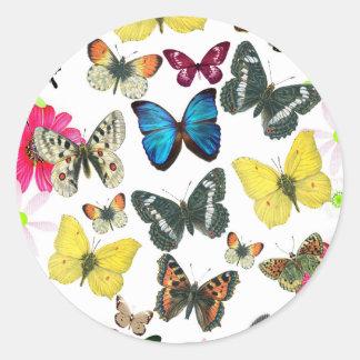 Mariposas coloridas del amarillo del rojo azul del pegatina redonda