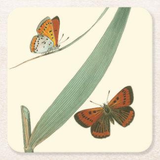 Mariposas coloridas que agitan alrededor de una posavasos de cartón cuadrado