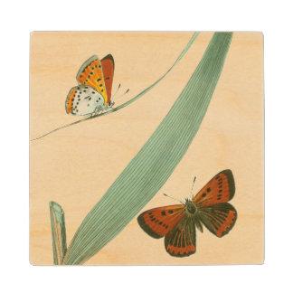 Mariposas coloridas que agitan alrededor de una posavasos de madera