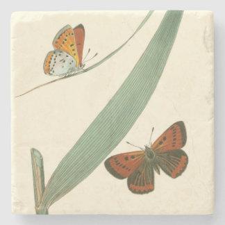 Mariposas coloridas que agitan alrededor de una posavasos de piedra