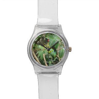 Mariposas de acoplamiento reloj de mano