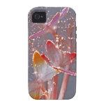 Mariposas de la fibra óptica que brillan intensame Case-Mate iPhone 4 funda