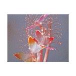 Mariposas de la fibra óptica que brillan intensame lona envuelta para galerias