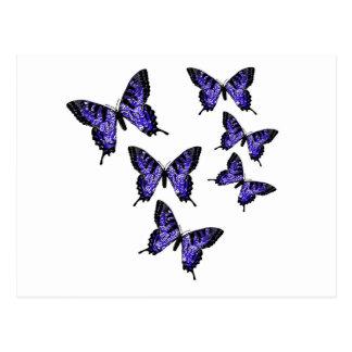 Mariposas de la mariposa tarjetas postales