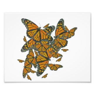 """Mariposas de monarca - 10"""" x 8"""" impresión cojinete"""