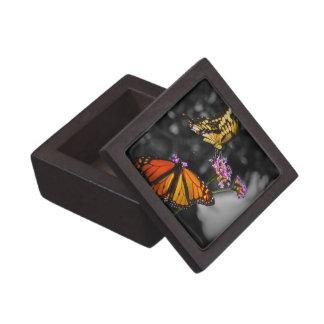Mariposas de monarca amarillas y anaranjadas en la cajas de regalo de calidad