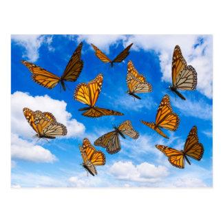 Mariposas de monarca en el cielo tarjetas postales
