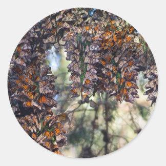 Mariposas de monarca etiqueta redonda