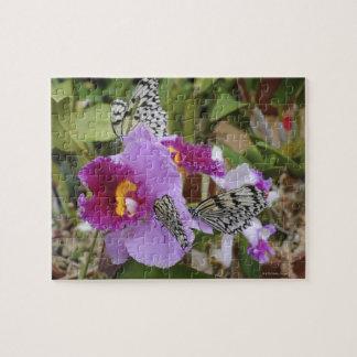 Mariposas de papel de la cometa (leuconoe de la puzzles con fotos