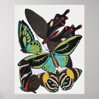 Mariposas del art déco poster