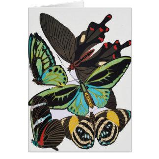 mariposas del art déco tarjetas