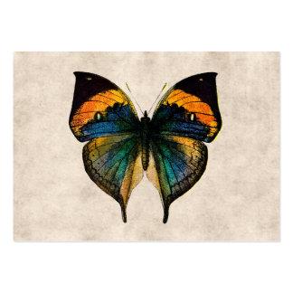 Mariposas del ejemplo 1800's de la mariposa del tarjetas de visita grandes
