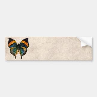 Mariposas del ejemplo 1800's de la mariposa del vi etiqueta de parachoque
