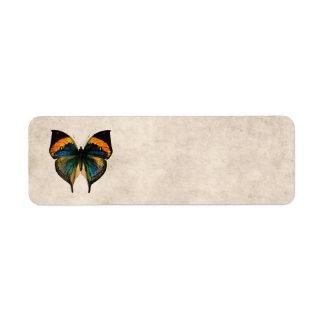 Mariposas del ejemplo 1800's de la mariposa del vi etiquetas de remite