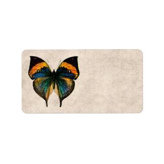 Mariposas del ejemplo 1800's de la mariposa del vi etiquetas de dirección