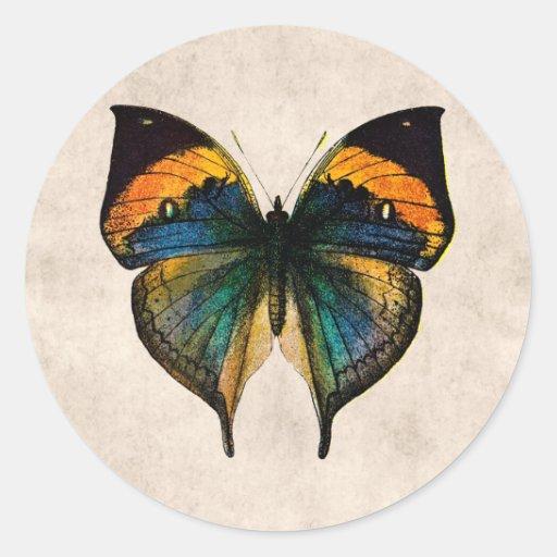 Mariposas del ejemplo 1800's de la mariposa del vi etiqueta redonda