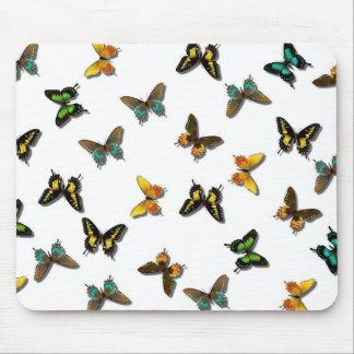 Mariposas del verano que agitan alfombrillas de raton