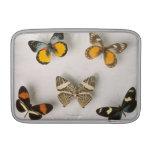 Mariposas dispersadas fundas para macbook air