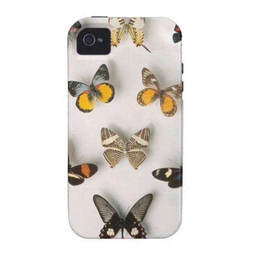 Mariposas dispersadas iPhone 4 carcasas