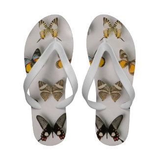 Mariposas dispersadas sandalias