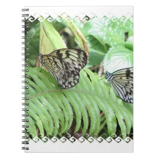 Mariposas en el cuaderno del helecho