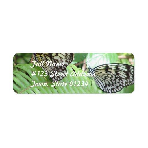 Mariposas en etiqueta de correo del helecho etiquetas de remite