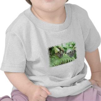 Mariposas en la camiseta del bebé del helecho