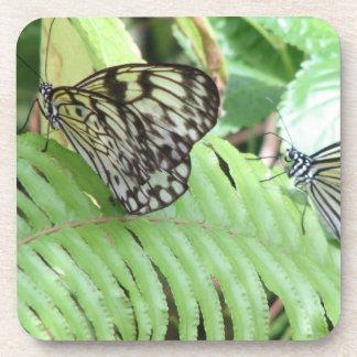 Mariposas en los prácticos de costa del corcho del posavasos