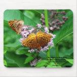 Mariposas en Milkweed Alfombrillas De Ratones