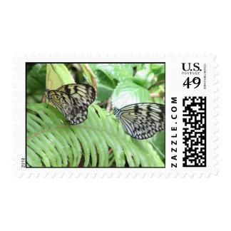 Mariposas en sello del helecho