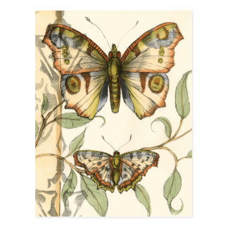 Mariposas en tándem sobre las hojas verdes tarjeta postal