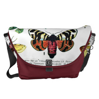 Mariposas europeas bolsa de mensajería