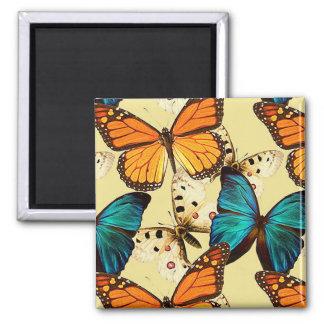 Mariposas hermosas imán cuadrado