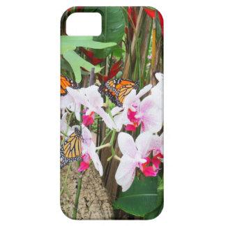 Mariposas hermosas iPhone 5 carcasa