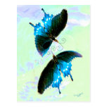 Mariposas hermosas tarjetas postales
