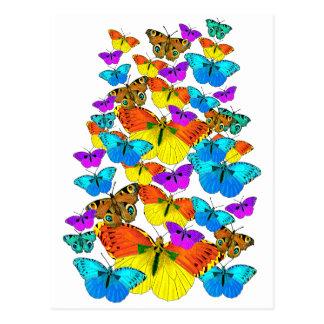 ¡Mariposas! ¡Mariposas!  Postal