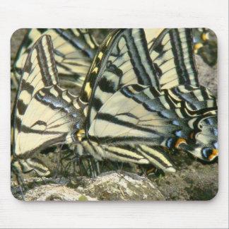 Mariposas Mousepad de Swallowtail