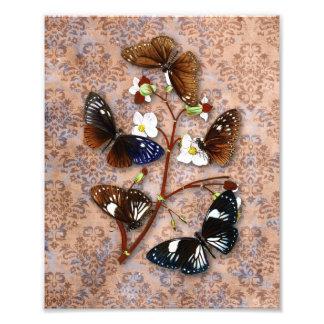 Mariposas orientales con el fondo del damasco del  fotografías
